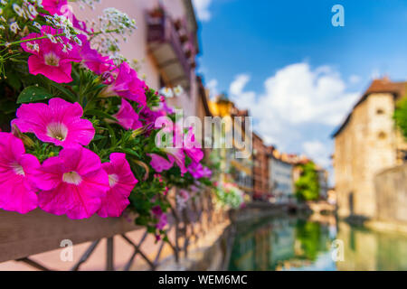 Bright flowers on the streets of Annecy, France. Summer in Europe. - Stock Photo