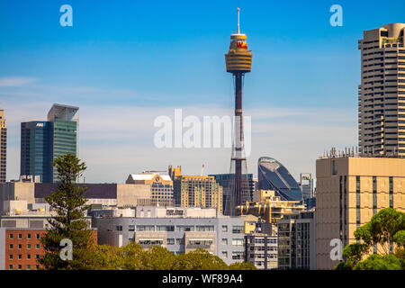 The Royal Hotel Paddington, Sydney, NSW, Australia. Polished hangout with a ground-floor pub, upstairs restaurant and a rooftop bar with city views. - Stock Photo