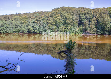 Lake in the beech forest (German: Herthasee), Jamsund National Park. The way to the cliff, Germany. - Stock Photo