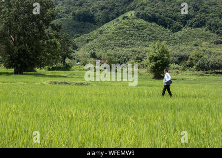 Side View Of Doctor Walking On Grassy Field Against Mountain - Stock Photo