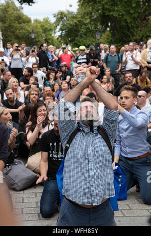 London, UK. 28th August 2019. Anti-Brexit protesters taking to the streets of central London, demonstrating against proroguing Parliament by the Conservative Government and Prime Minister Boris Johnson, seen sitting and standing in front of 10 Downing Street. Credit: Joe Kuis / Alamy News - Stock Photo