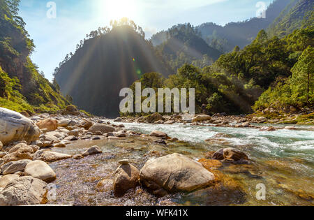 Gori Ganga mountain river at sunrise surrounded with dense forest at Munsiyari, Uttarakhand, India - Stock Photo