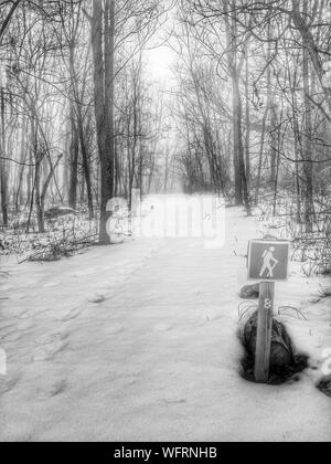 Sign Post For Hiking Trail In Snow Covered Forest - Stock Photo