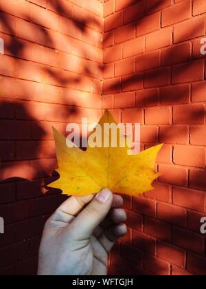 Cropped Image Of Hand Holding Maple Leaf Against Brick Wall - Stock Photo