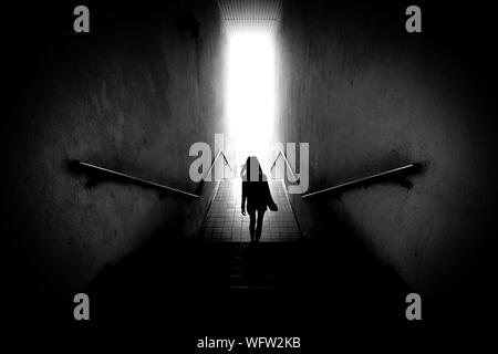 Rear View Of Silhouette Woman Walking On Steps - Stock Photo
