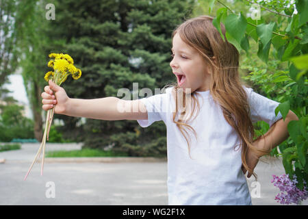 Emotional little girl of school age holds a bouquet of yellow dandelions on an outstretched arm. She is wearing a white T-shirt and screaming with del - Stock Photo