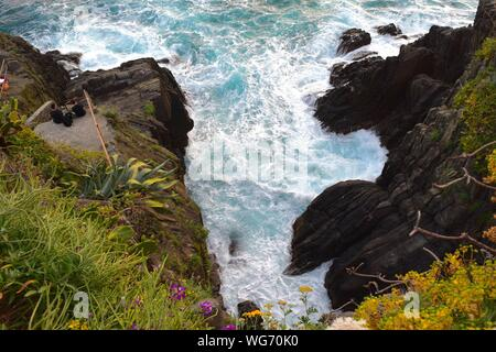 Plants Growing On Rock Formations By Sea - Stock Photo