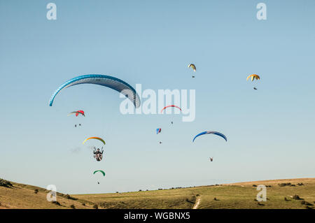 Devils Dyke, Brighton, Sussex, UK..1st September 2019..North Westerley wind brings paraglider pilots to the popular site North of Brighton in the beautiful South Downs. David Burr/Alamy Live News. - Stock Photo
