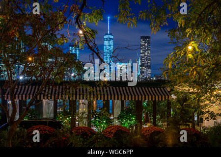Trees Against Illuminated Buildings In Park At Night - Stock Photo
