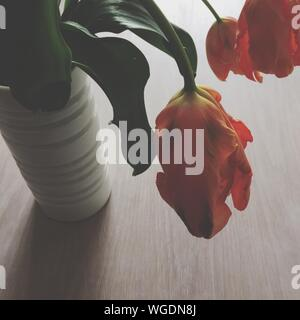 High Angle View Of Wilted Tulips In Vase On Table - Stock Photo