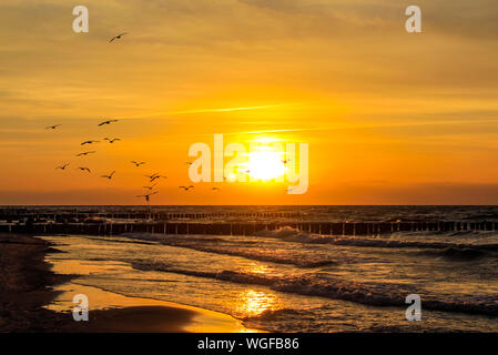 Scenic View Of Birds Flying Over Sea Against Orange Sky - Stock Photo
