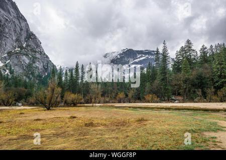 Landscape of Yosemite National Park landscape, California. USA