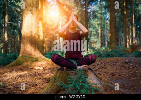 woman sitting on a tree stump in a forest meditating, practicing yoga.