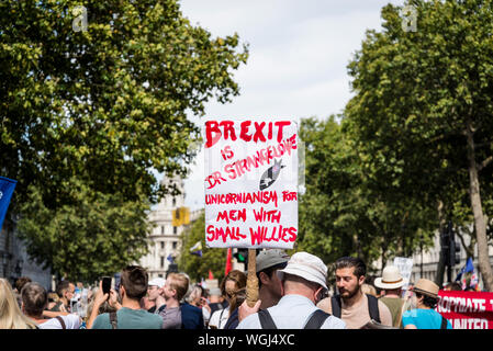 Protest against the suspension of Parliament, London, UK, 31/08/2019 - Stock Photo