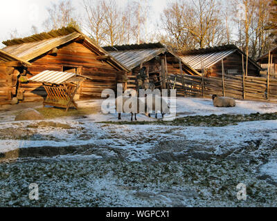 Sheep And Man By Log Cabins On Snow Covered Field - Stock Photo