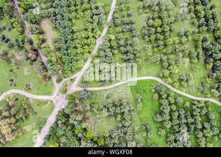 top view aerial photo from flying drone of beautiful summer landscape with apple orchard and footpaths - Stock Photo