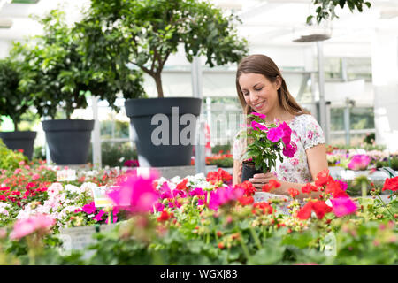 Attractive young girl buying impatiens plants at a flower nursery selecting a purple variety from a large assortment of colors with a happy smile - Stock Photo