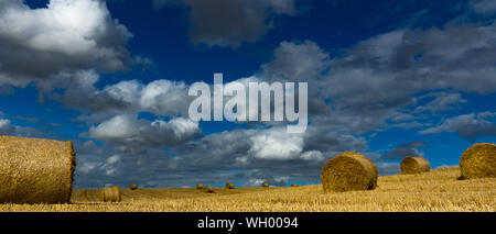 Hay Bales On Agricultural Field Against Sky - Stock Photo
