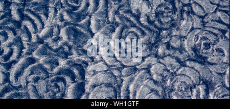 Blue floral background with abstract roses texture pattern. - Stock Photo