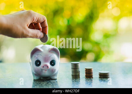 Close-up Of Hand Inserting Coin In Piggy Bank - Stock Photo