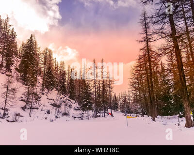 Chamonix Mont Blanc, France, French Alps beautiful pink sunset view of ski slope, forest fir trees and snow mountain peaks - Stock Photo