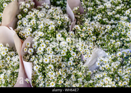 Bouquets of white aster flowers at Pak Khlong Talat, famous flower market in Bangkok, Thailand. - Stock Photo