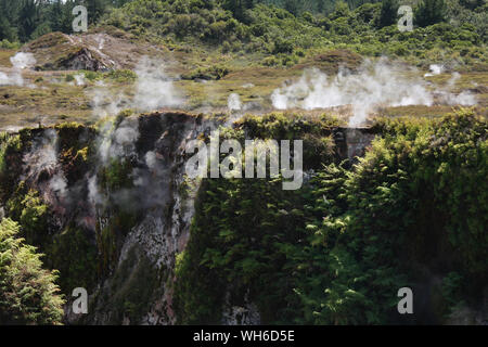 Plants Growing On Rock Formations At Craters Of The Moon - Stock Photo