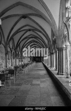Salisbury Cathedral Clositer - Stock Photo