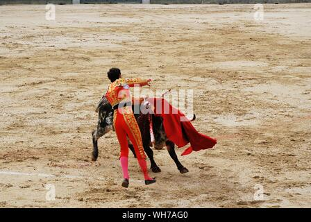Bullfighter Holding Red Cape With Bull - Stock Photo