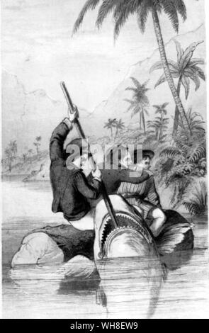 Terrible encounter with a shark. The Coral Island 1858 by RM Ballantyne (1825-1894), Scottish author. - Stock Photo
