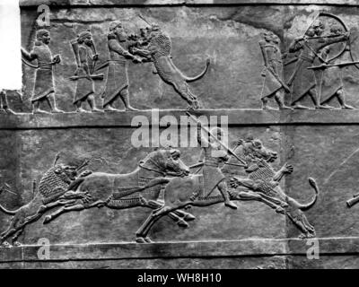 Assyria Bas relief from Nineveh, seventh century BC, shows King Ashurbanipal hunting lion. From Encyclopedia of the Horse page 67. - Stock Photo