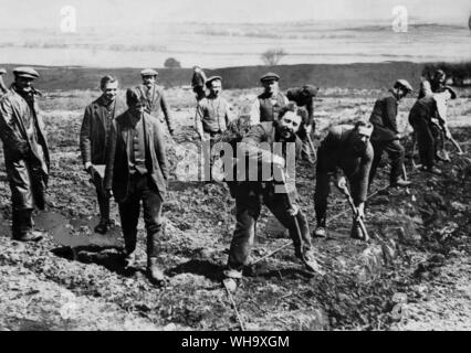 WW1: The Dartmoor conscientious objectors are seen professedly cultivating the soil, but they spend much of their time on leave or strolling on the moors, smoking, reading and talking. April 1917. - Stock Photo