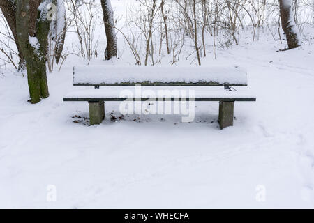 Empty Snow Covered Bench By Bare Trees In Park - Stock Photo