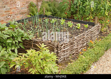 A raised bed surrounded by woven willow in the kitchen garden of an old country house. - Stock Photo