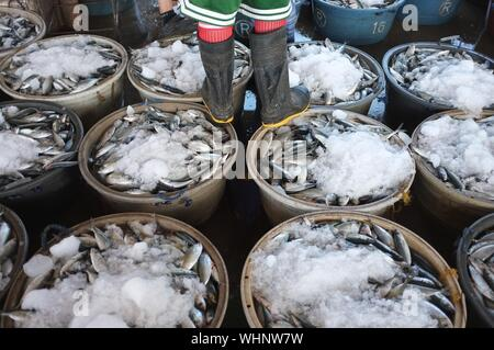 Low Section Of Man Wearing Rubber Boots Standing On Fresh Fish Baskets At Market - Stock Photo