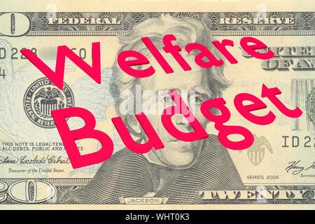 3D illustration of Welfare Budget on Twenty Dollars bill as a background - Stock Photo