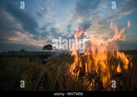 Close-up Of Fire In Field Against Sky During Sunset - Stock Photo