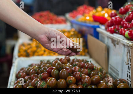 Close up of a variety of different colored cherry tomatoes for sale at a outdoor market, during harvest season. Farming and agriculture. - Stock Photo