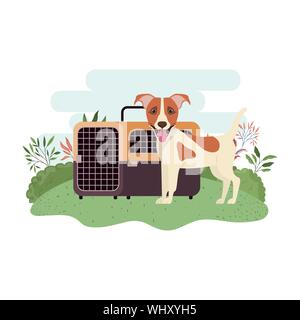 dog and pet transport box with background landscape - Stock Photo
