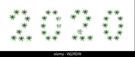 Creative Christmas pattern 2020 made of natural green fir tree branches as snowflakes on white background, isolated. - Stock Photo