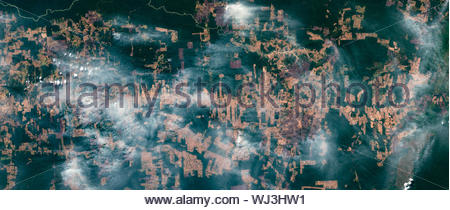 High resolution satellite image of fires and smoke in the Amazon basin rain forest in August 2019, Brazil, contains modified Copernicus data [2019] - Stock Photo