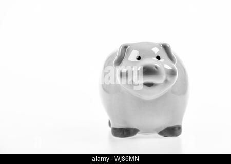 money saving. income management. financial problem. planning budget. piggy bank isolated on white. copy space. Piggybank and money. investments in the form of a toy pig piggy bank. Time to relax. - Stock Photo