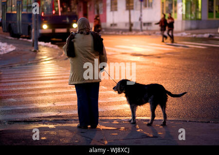 Full Length Rear View Of Woman With Dog Standing On Sidewalk At Dusk - Stock Photo