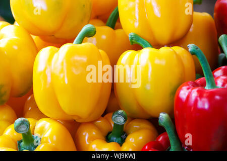 Fresh red and yellow sweet bell pepper background - Stock Photo