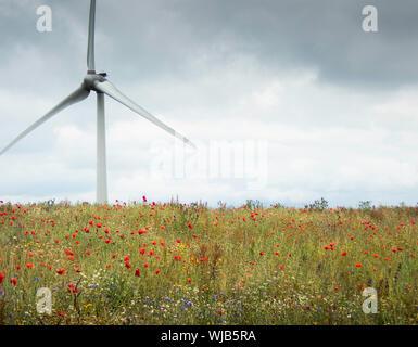 Wind Turbine, Carsington Moor, Peak District - Stock Photo