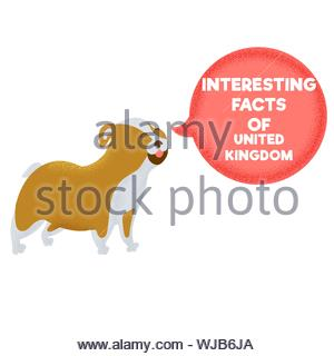 Interesting facts of the United Kingdom animal bulldog symbol. Tourist destinations in United Kingdom. Vector eps 10 file editable - Stock Photo