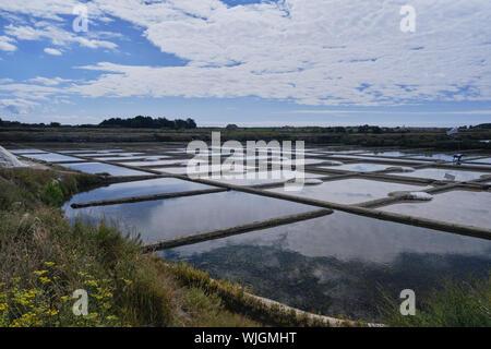 The salt flats in Guérande Loire-Atlantique Pays de la Loire - Stock Photo
