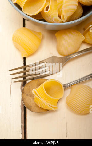 Conchiglie Pasta On Spoon By Bowl - Stock Photo