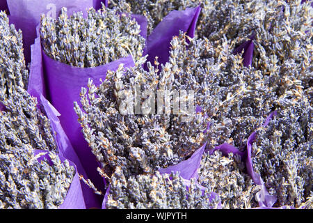 close up on bouquets of dried lavender flower wrapped in purple paper. - Stock Photo