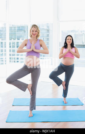 Smiling pregnant women in yoga class in tree pose in a fitness studio - Stock Photo